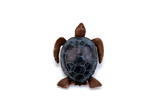 Sea turtle door knocker sea turtles unlimited - Turtle door knocker ...
