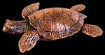 Single Copper Coated Sea Turtle Sculpture
